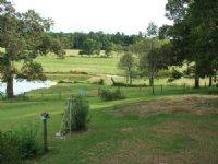 Lane Farm & Cattle Ranch