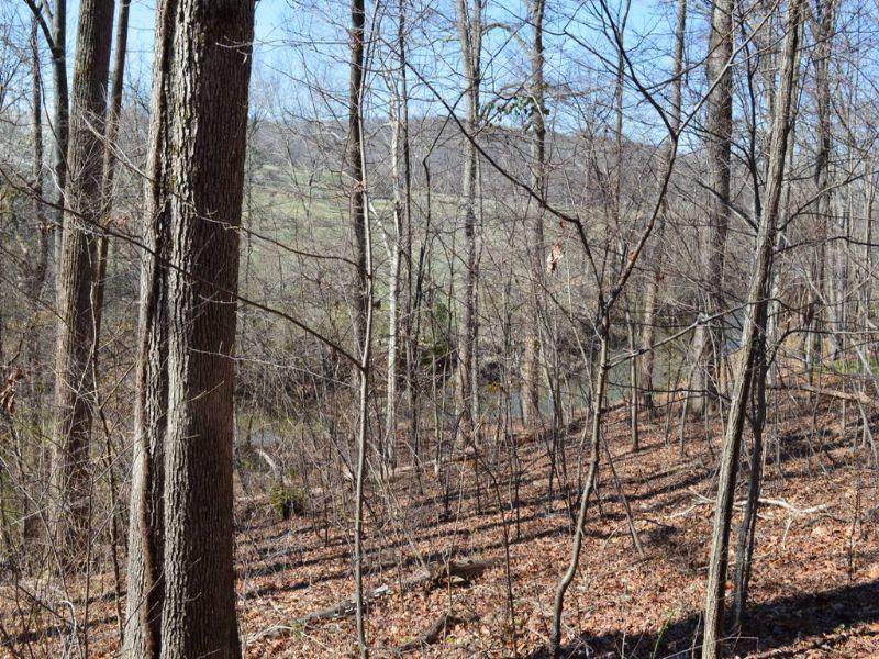 5.81 Acres Near Fairview Farms : Landrum : Spartanburg County : South Carolina