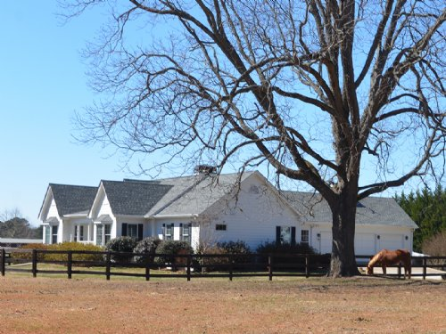 Horse Farm - 5ac, Barn, Ring : Social Circle : Walton County : Georgia