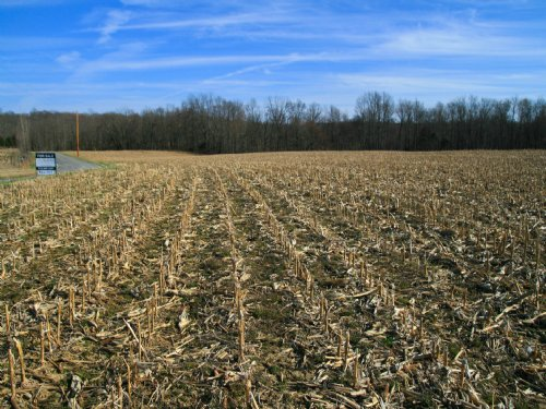 87 Acre Row Crop + Hardwood Timber : Livingston : Overton County : Tennessee