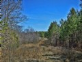 114 Acre Recreational Tract