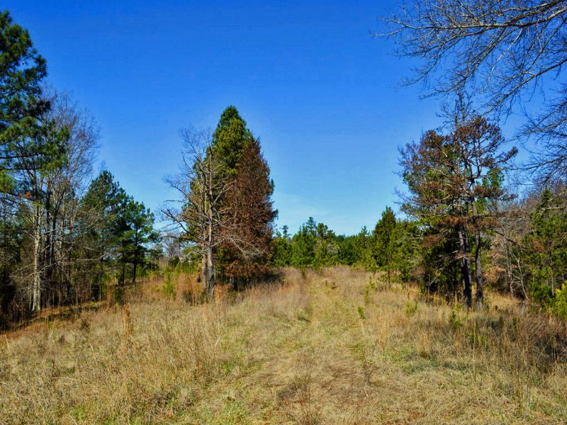 24 Acres Recreational Tract : Gaffney : Cherokee County : South Carolina