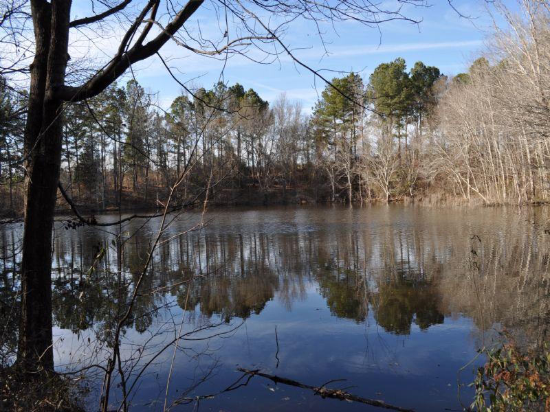 Mallard Ponds : Eatonton : Putnam County : Georgia