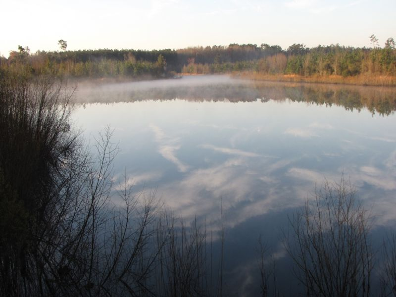 Edisto Ponds Tract : Givhans : Dorchester County : South Carolina