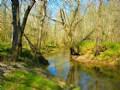 Sugar Creek Crossing