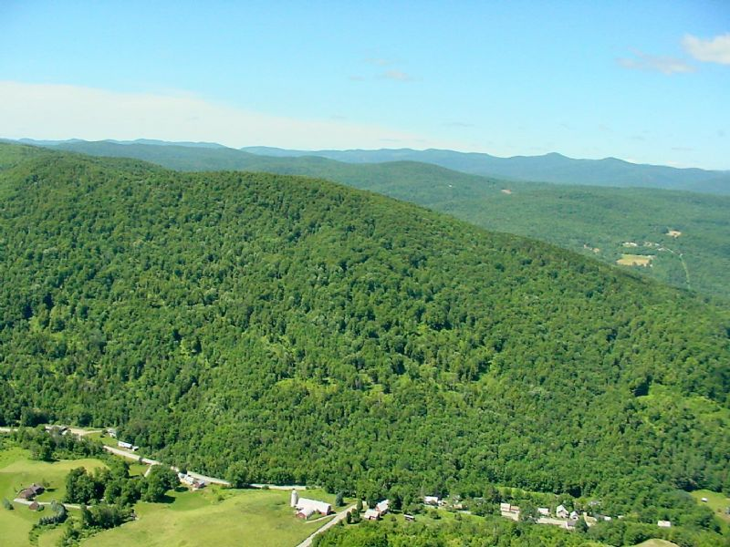Shaw Mountain Forest : Northfield : Washington County : Vermont