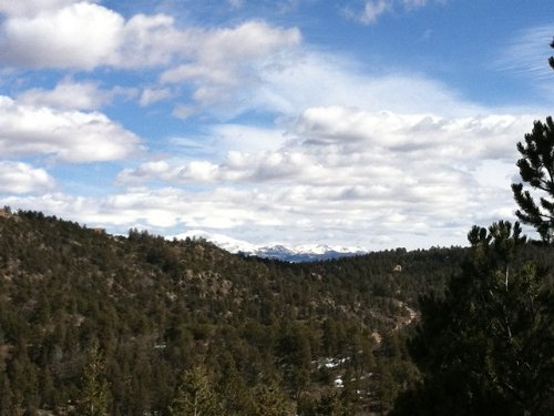 41 Ac Bank Foreclosure Mtn Property : Canon City : Fremont County : Colorado