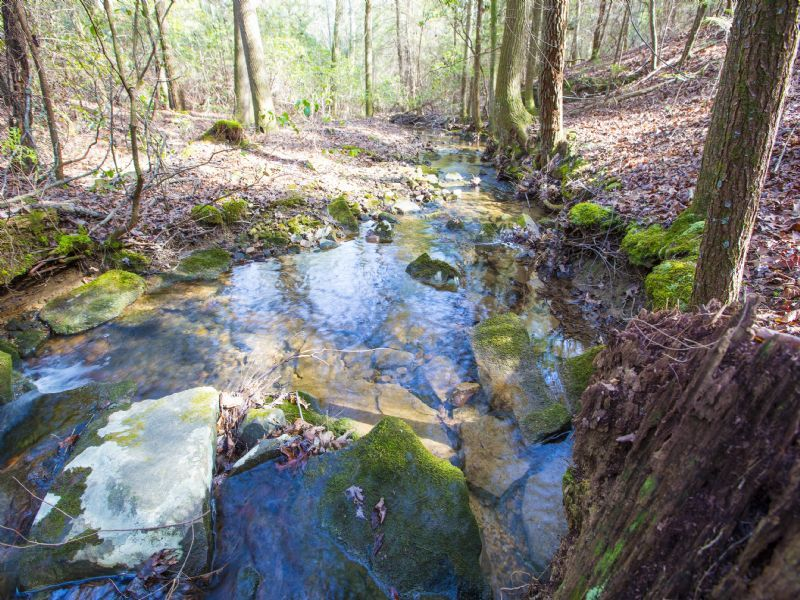 Wooded With Creek Frontage : Spring City : Bledsoe County : Tennessee