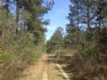 Lewis Miller Tract