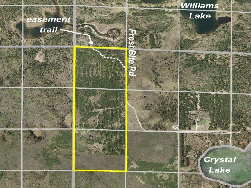 Hubbard, White Oak, 1403213, Nwnw & : Akeley : Hubbard County : Minnesota