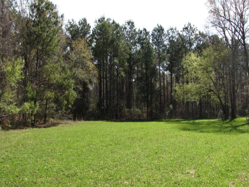 Ravenwood South : Summerville : Dorchester County : South Carolina
