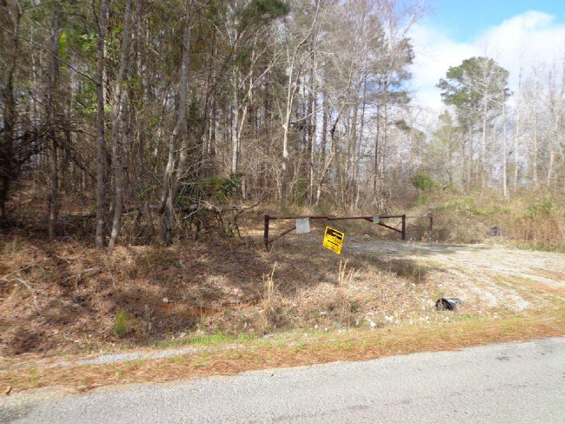 Union Parish Land Auction : Downsville : Union Parish : Louisiana