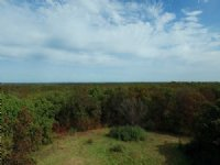 42 Acres Youngstown Trail : Kirksville : Adair County : Missouri