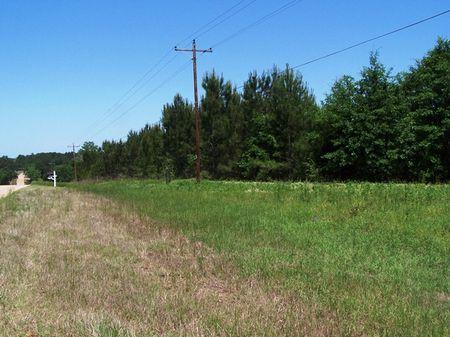 Pleasant Grove : Ashford : Houston County : Alabama