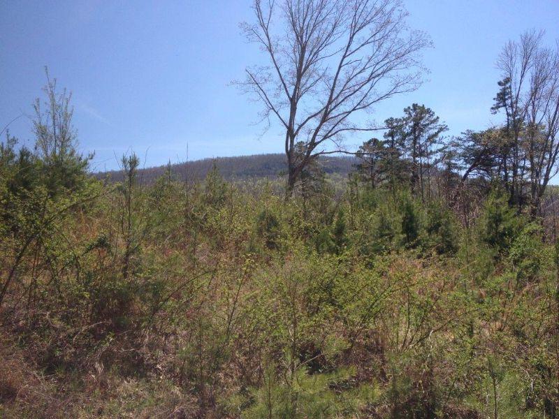5.00+/- Acres With Beautiful Views : Whitwell : Marion County : Tennessee