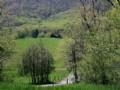 9.89 Acres W/ Views Of Blue Ridge