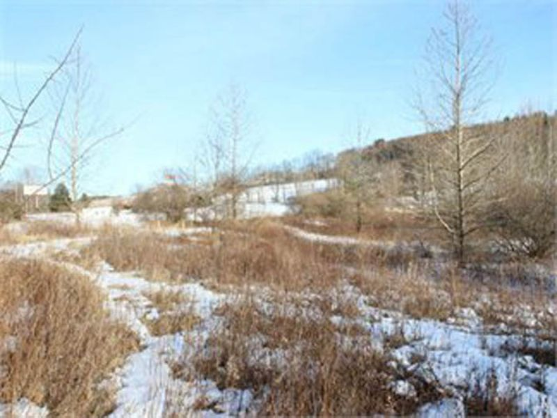 26 +/- Acre Commercial Land Auction : Bloomsburg : Columbia County : Pennsylvania