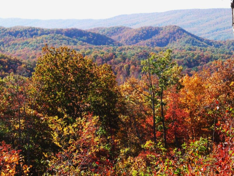 Equestrian & Hunting Land With Old : Wytheville : Wythe County : Virginia