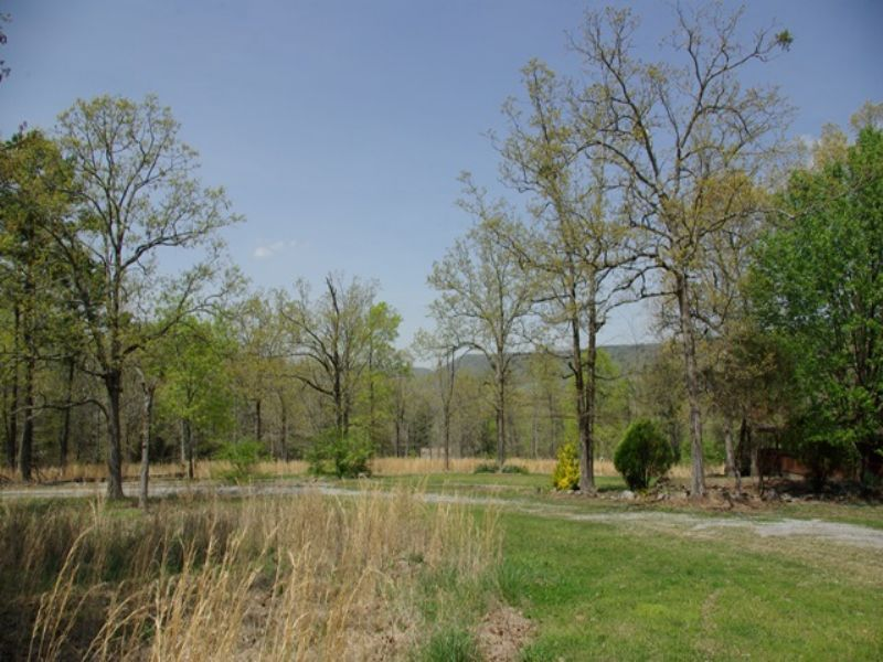 17 Ac & Home Foreclosure : Steele : Saint Clair County : Alabama
