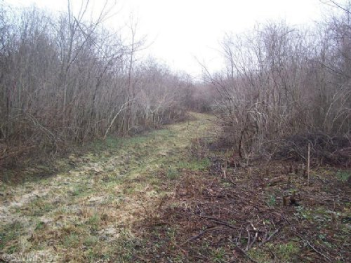 26.87 Hunting Acres : Hartford : Van Buren County : Michigan