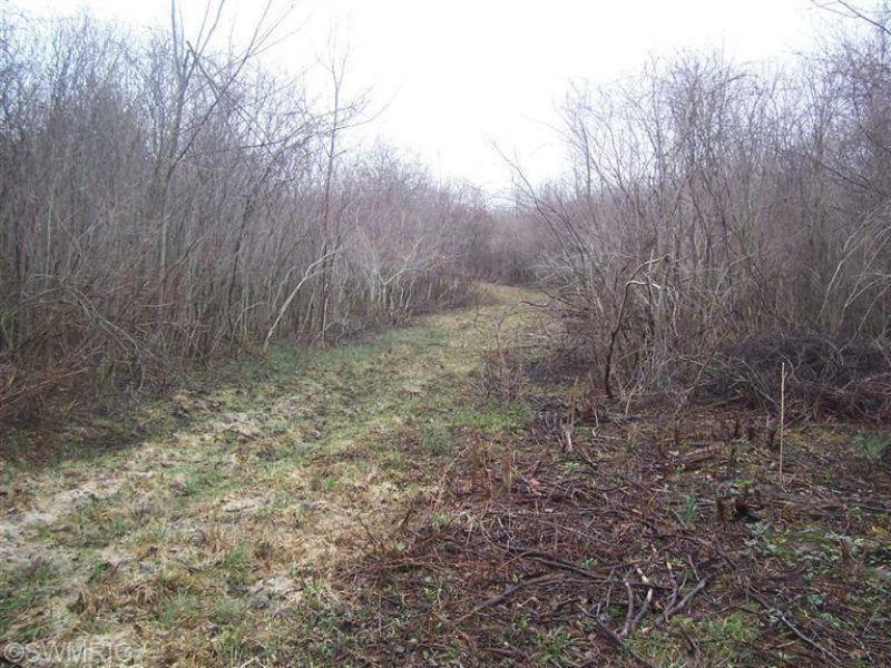 26.87 Hunting Acres : Hartford : Van Buren County : Michigan