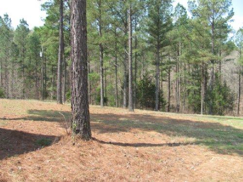 51 Acres : Union : South Carolina