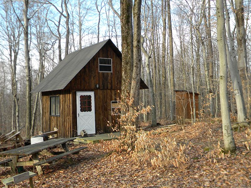 20+ Acres Surrounded By State Fores : Virgil : Cortland County : New York