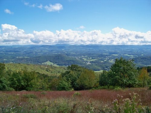 Lot T-6  Views Blue Ridge Mountains : Independence : Grayson County : Virginia