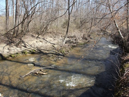 210 Acres On Turnip Creek : Brookneal : Charlotte County : Virginia