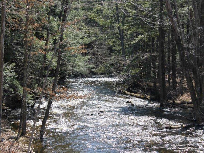 50 Acres In Adirondack Foothills : Oppenheim : Fulton County : New York