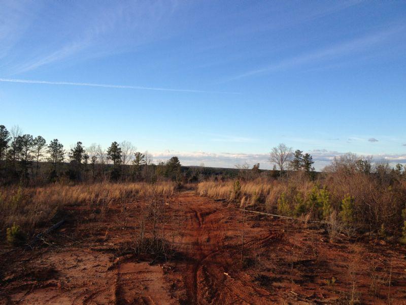 Highway 72 Tract B : Clinton : Laurens County : South Carolina