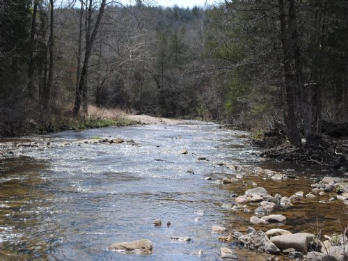 Large Acreage On Livingston Creek : Mountain View : Stone County : Arkansas