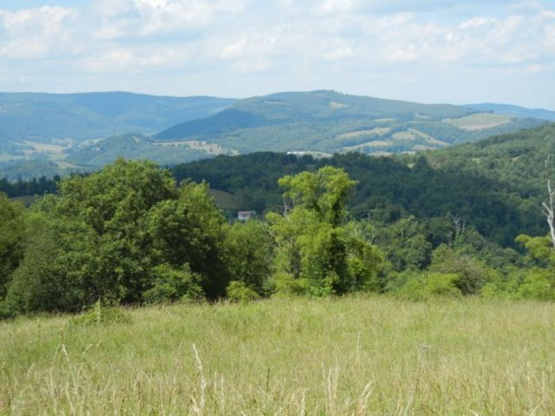 Mountain Top Homesite W/great Views : Independence : Grayson County : Virginia