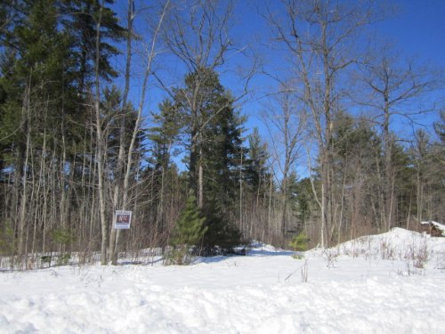 6+ Acres In Arbor Vitae : Arbor Vitae : Vilas County : Wisconsin