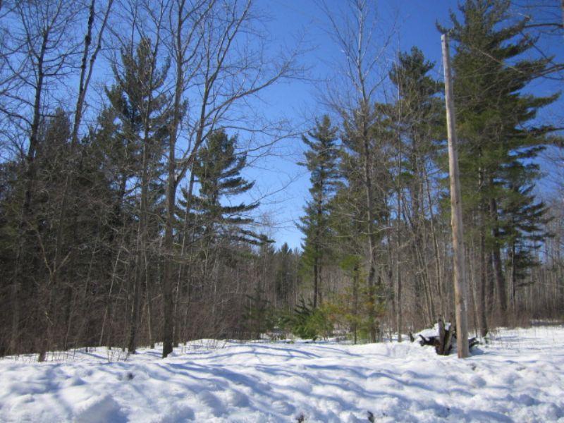 Lot 6 Towering Pines Subdivision : Arbor Vitae : Vilas County : Wisconsin