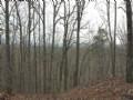 Oak Mountain Tract