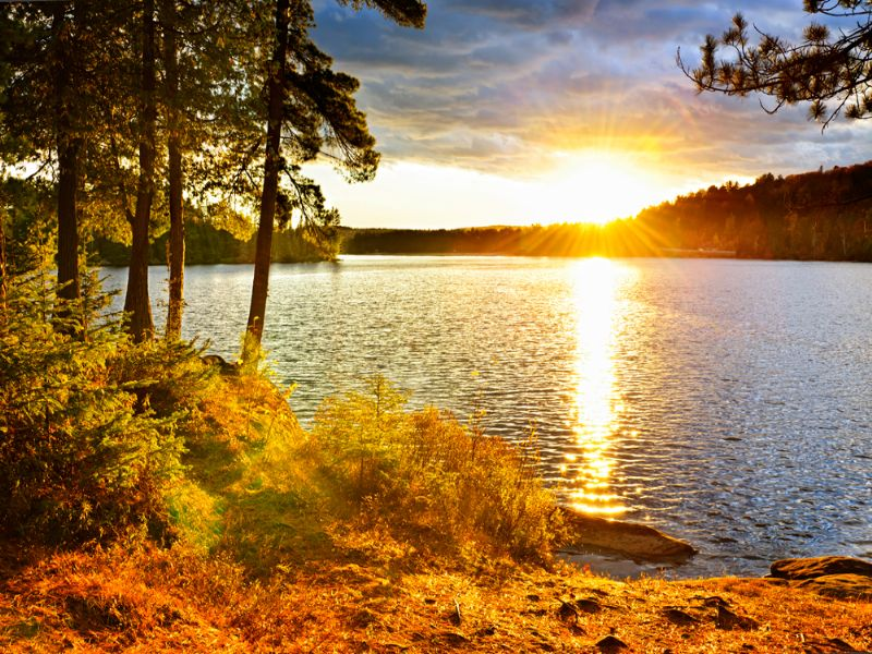 Spectacular Lakefront Estate : Chatham : Pittsylvania County : Virginia