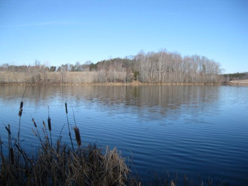 Grand View Lake Frontage : Prospect : Prince Edward County : Virginia