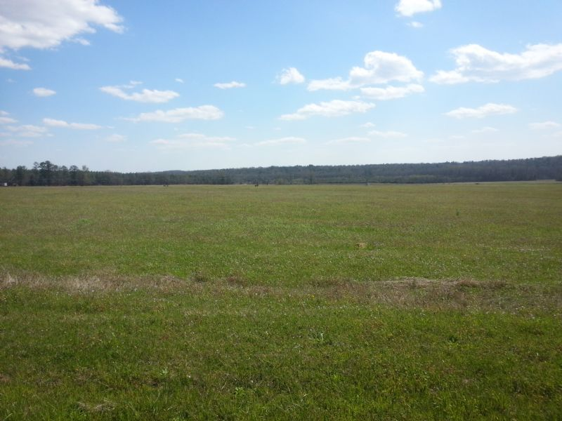 479.32 Acres : Powersville : Peach County : Georgia