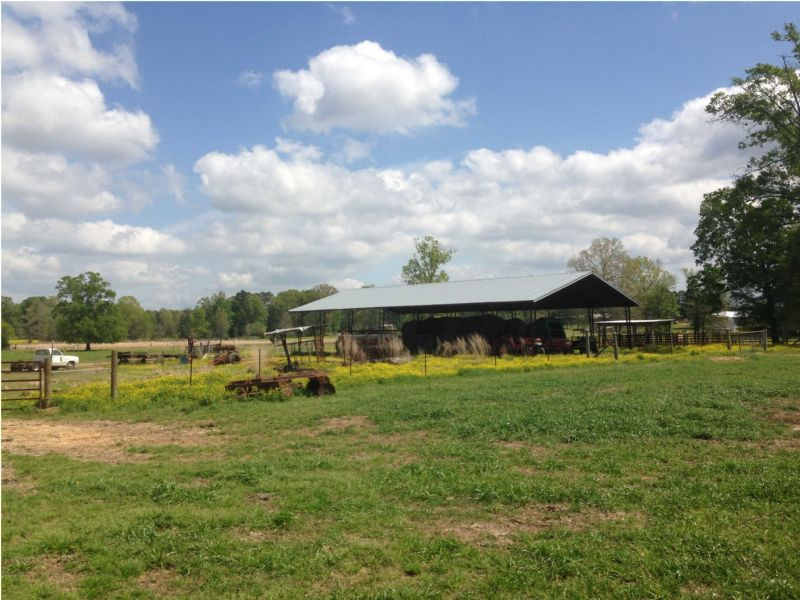 Beautiful Pasture And Home : Harrisville : Simpson County : Mississippi