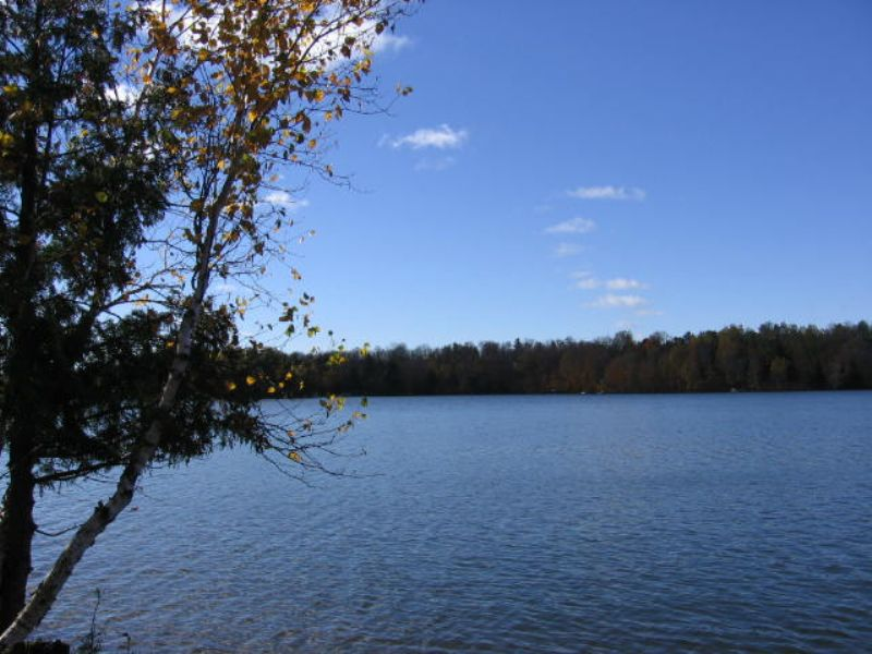 Acreage On Turtle Lake : Winchester : Vilas County : Wisconsin