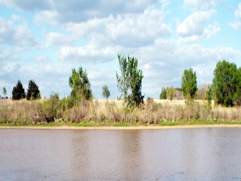 80± Acres - Pond - Hunting - Crop : Garber : Garfield County : Oklahoma