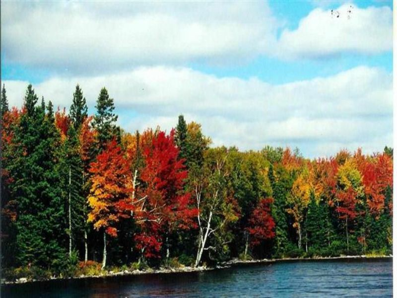 Lot 38 N Fence Lake Dr, Mls#1088463 : Michigamme : Baraga County : Michigan