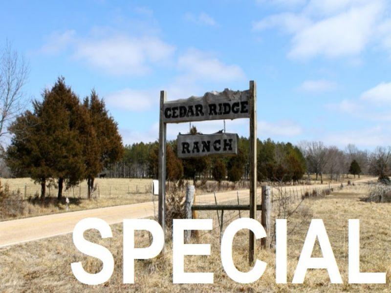 5.1 Acres Cedar Ridge Ranch. Terms : Rolla : Phelps County : Missouri