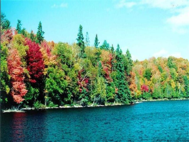 Lot 39 N Fence Lake Dr, Mls#1088461 : Michigamme : Baraga County : Michigan