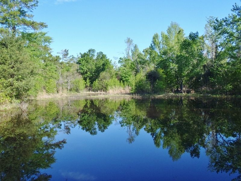 Hidden Pond : Rattan : Pushmataha County : Oklahoma