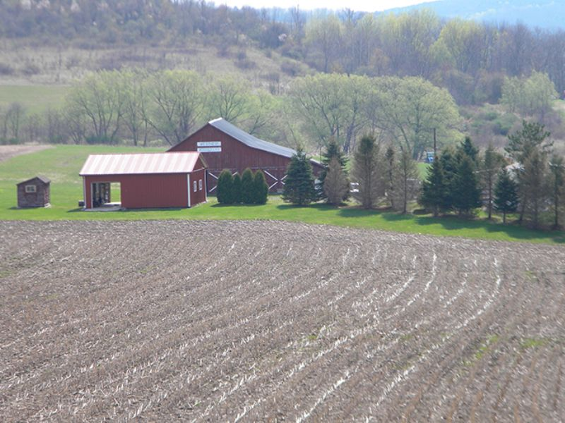 299 Acres With House And Barn : Woodhull : Steuben County : New York