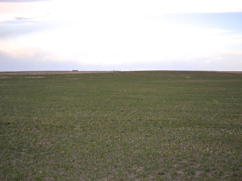 Dailey Dryland & Crp Land Auction : Dailey : Logan County : Colorado