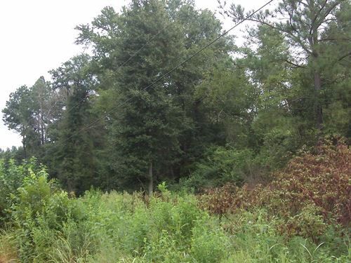 Keysville Farms - 5.35 Acre Lot : Keysville : Burke County : Georgia