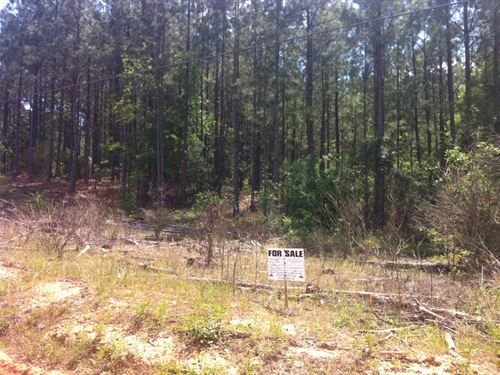 Riverbrooke Plantation - 13.02 Acre Lot : Covington : Newton County : Georgia
